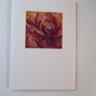 Intense Rose detail<br />A6 appx portrait<br />&pound;5